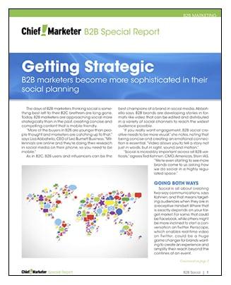 B2B Social Media Special Report