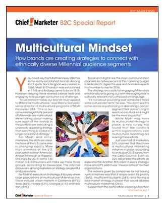 Multicultural Millennials Mindset Special Report