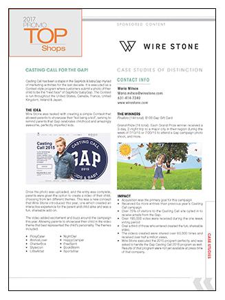 Wire Stone Case Study