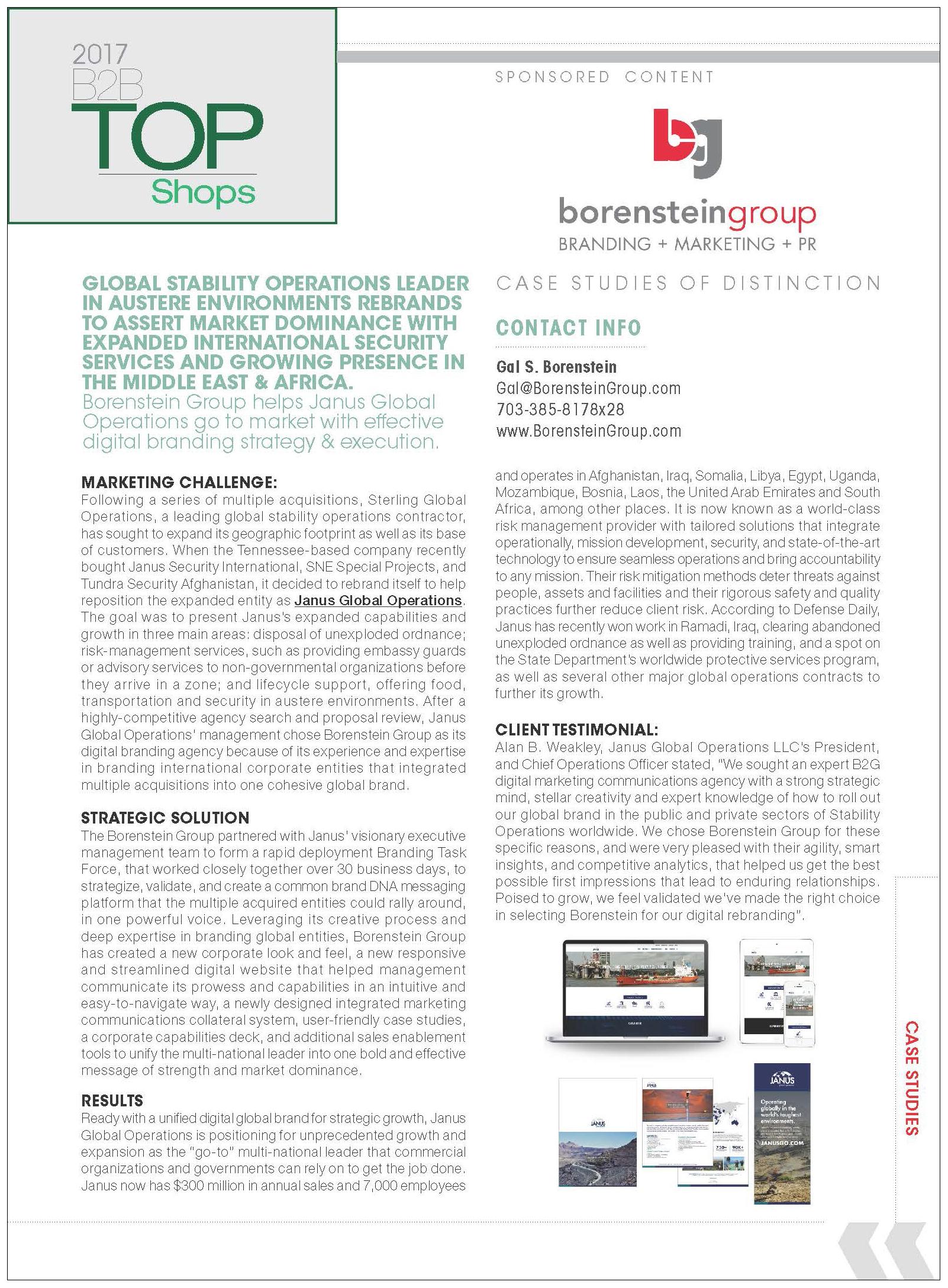 Borenstein Group, Inc Case Study
