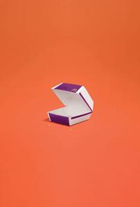 minimalist campaigns