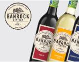 email marketing wine