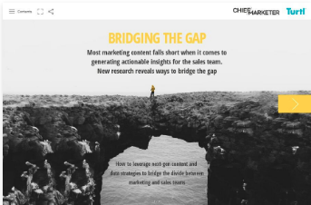 Bridging The Gap Turtl Special Report Cover
